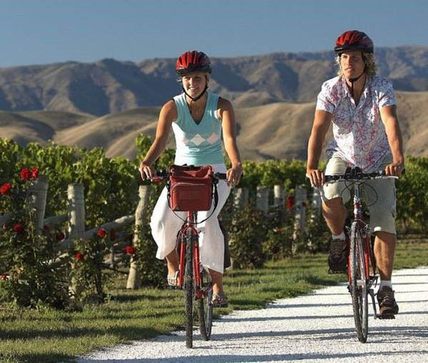 explore marlborough tours